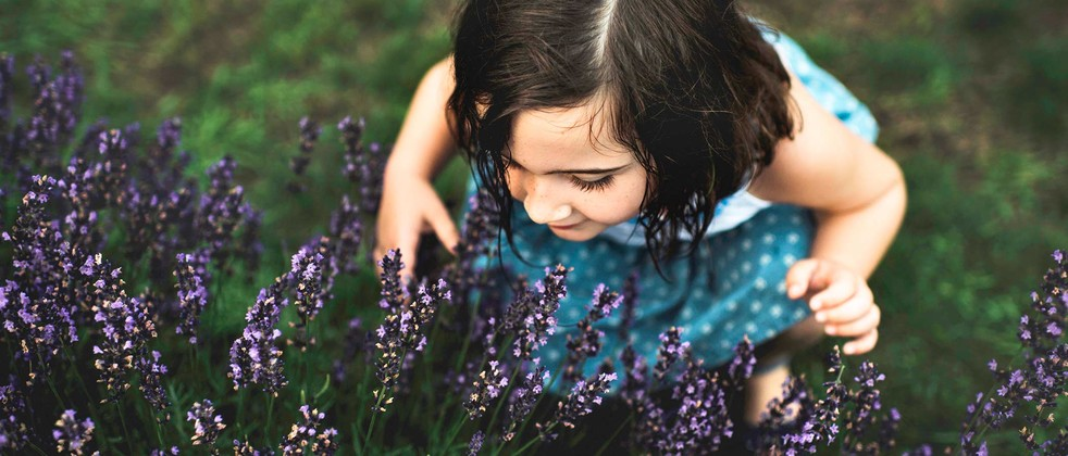 Toddler smelling flowers